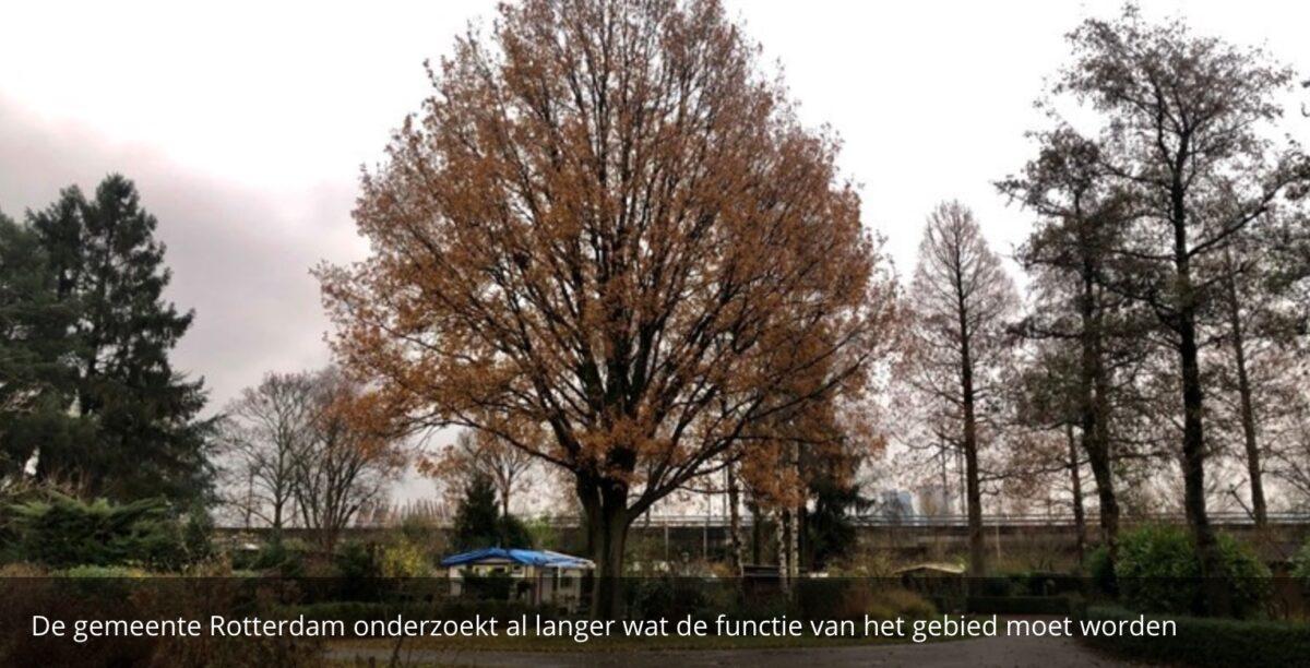 Nog geen besluit of volkstuinders Rotterdam-West tuin kwijtraken